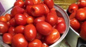 طريقة عمل معجون الطماطم الجاهز