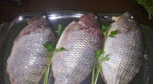 طريقة عمل صينية السمك بالصلصة